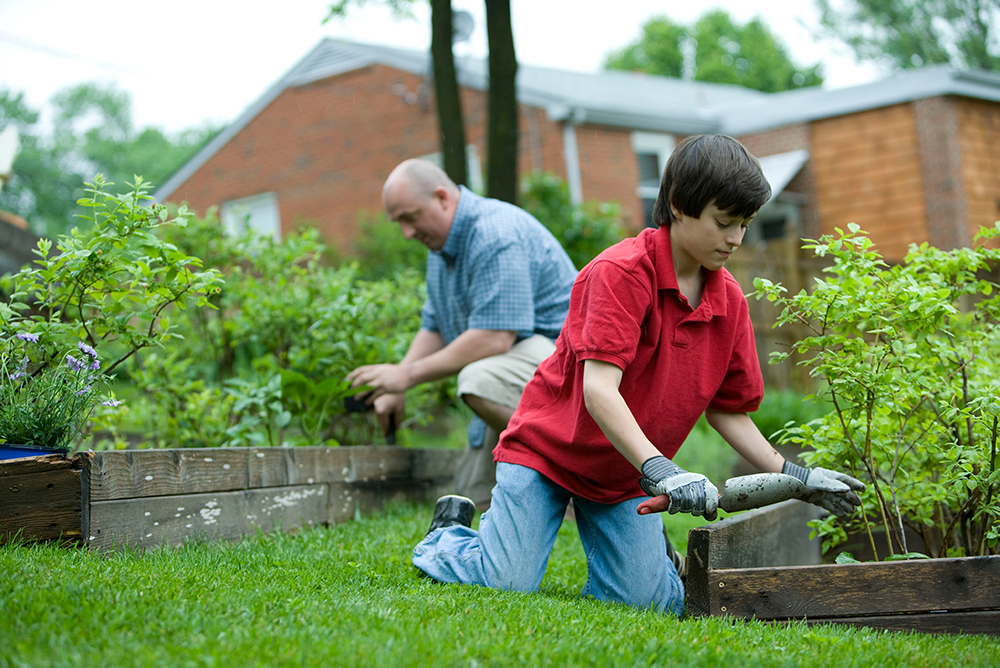 Man and boy gardening