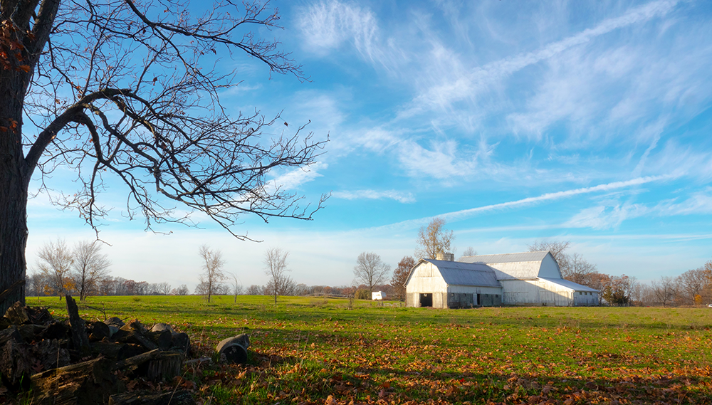 rural field with barn